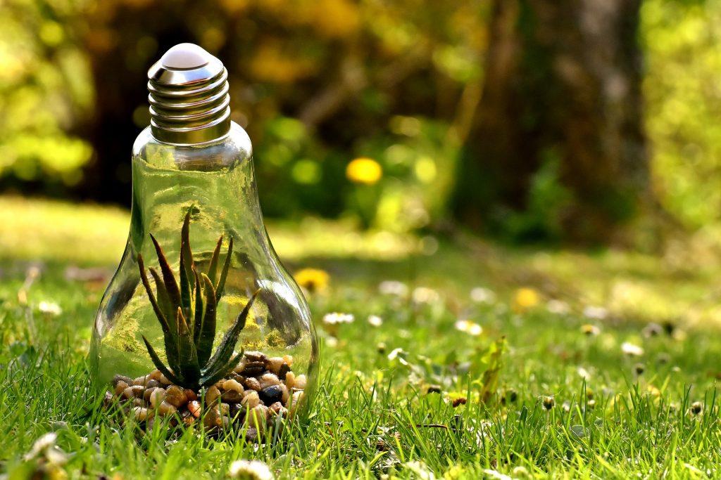 A Lightbulb in a Grass Field Showing Environmentally Friendly - Springbank Mechanical Toronto HVAC Company